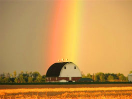 Rainbow Over a Farm in Delaware